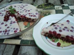 glutenvrije yoghurttaart met aalbessen met een chocoladekoekjesbodem